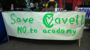 Save Cavell banner