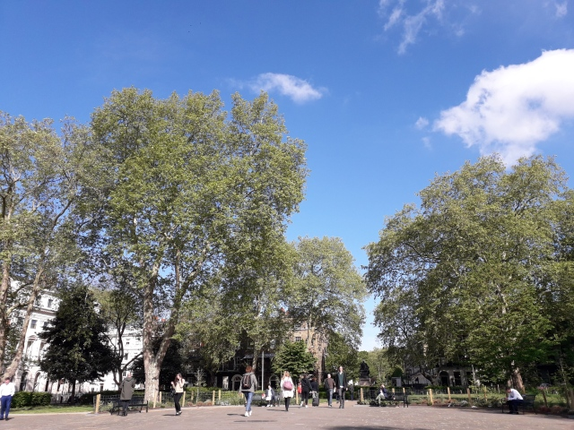 Bloomsbury Square Gardens on a sunny morning
